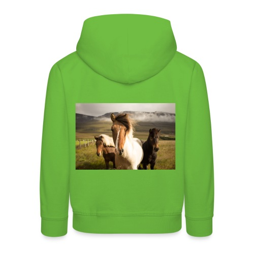 Islandpferde - Kinder Premium Hoodie