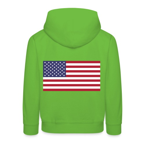 Small American Flag - Kids' Premium Hoodie