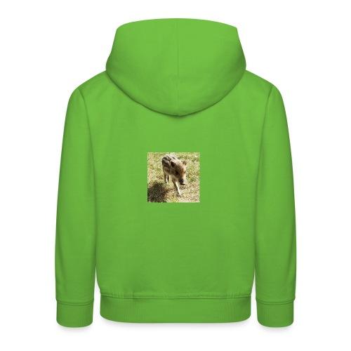63537_111113918961303_1279982_n - Kinder Premium Hoodie