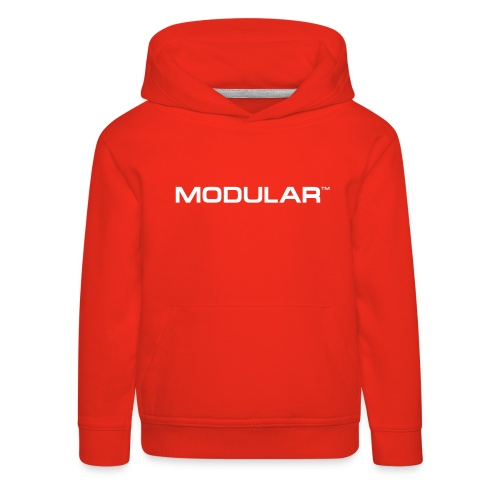 The Modular Agency - Kids' Premium Hoodie