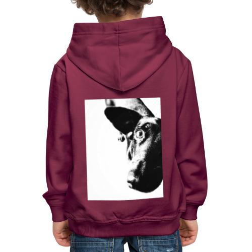 Einauge - Kinder Premium Hoodie