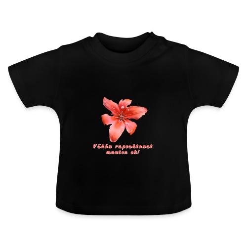Vähän rupsahtanut, muuten ok - Vauvan t-paita