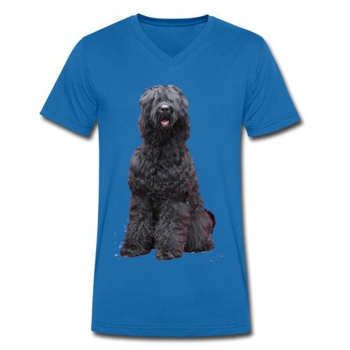 Bogdan - Männer Bio-T-Shirt mit V-Ausschnitt von Stanley & Stella