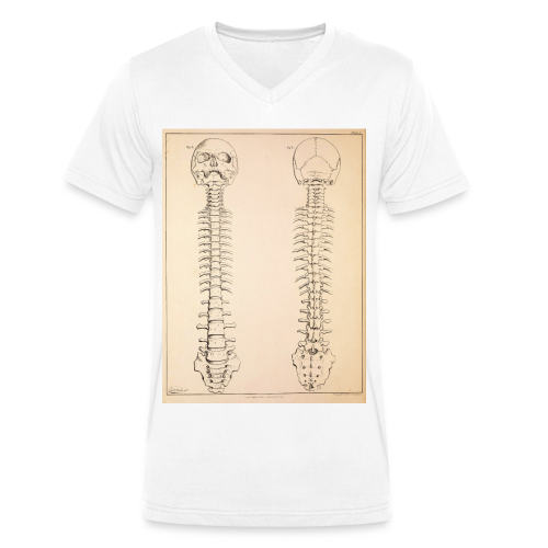 Anatomy book page - Men's Organic V-Neck T-Shirt by Stanley & Stella