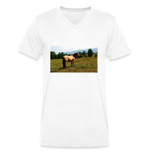 IMG_20150903_140848-jpg - Men's Organic V-Neck T-Shirt by Stanley & Stella