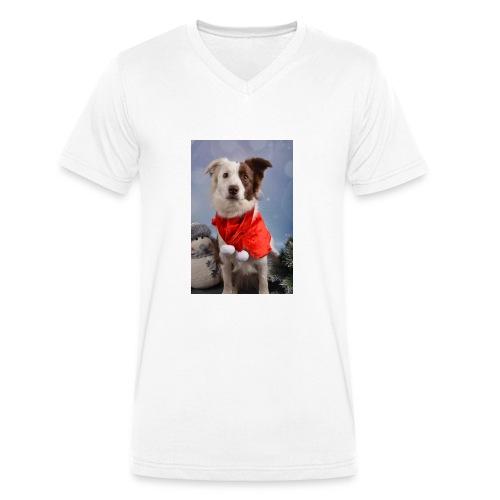DSC_2058-jpg - Mannen bio T-shirt met V-hals van Stanley & Stella