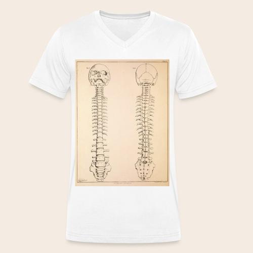 Anatomy book page - Men's Organic V-Neck T-Shirt by Stanley & Stella