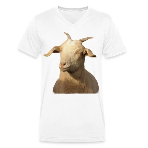 Raima png - Männer Bio-T-Shirt mit V-Ausschnitt von Stanley & Stella