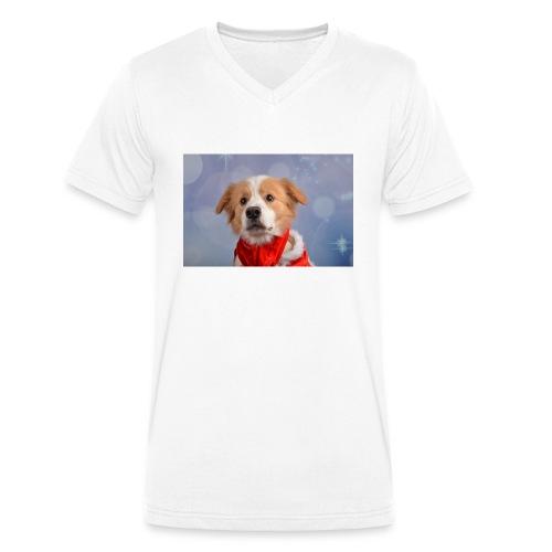 DSC_2040-jpg - Mannen bio T-shirt met V-hals van Stanley & Stella
