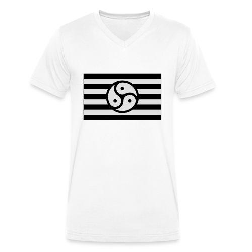 Frauen/Herrinnen T-Shirt BDSM Flagge SW - Männer Bio-T-Shirt mit V-Ausschnitt von Stanley & Stella