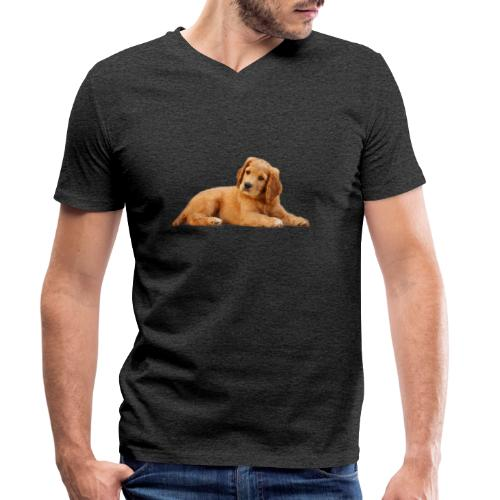 schoenenstelend blafbeest - Mannen bio T-shirt met V-hals van Stanley & Stella