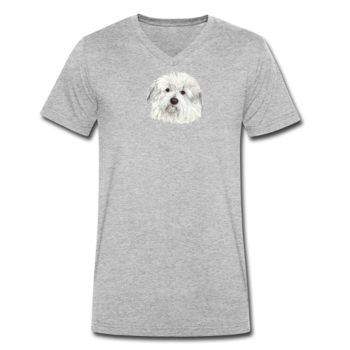 coton-de-tulear - Økologisk Stanley & Stella T-shirt med V-udskæring til herrer
