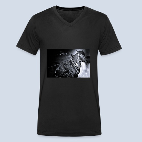 Noriker - Männer Bio-T-Shirt mit V-Ausschnitt von Stanley & Stella