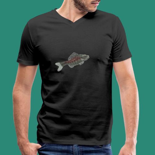 Der Fisch ist bunt - Männer Bio-T-Shirt mit V-Ausschnitt von Stanley & Stella