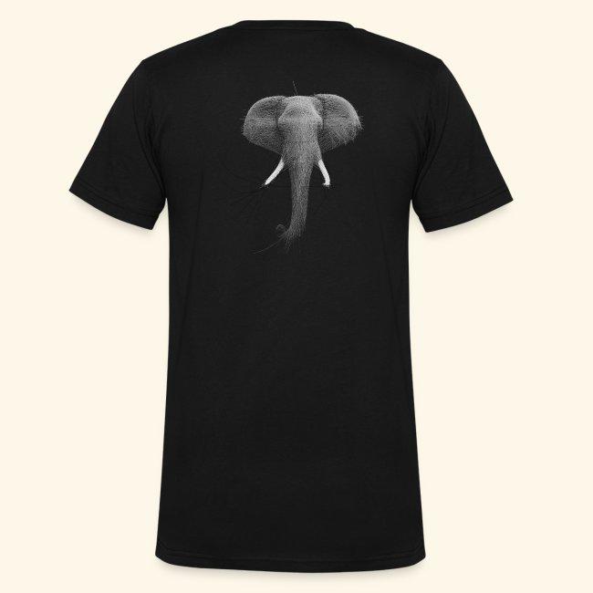 Bezier Elephant, by Hoa