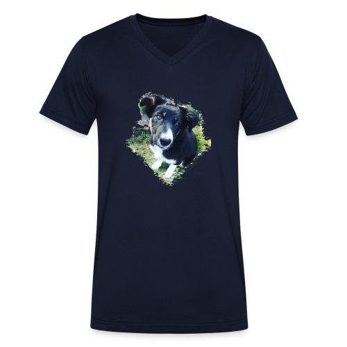 colliegermanshepherdpup - Men's Organic V-Neck T-Shirt by Stanley & Stella