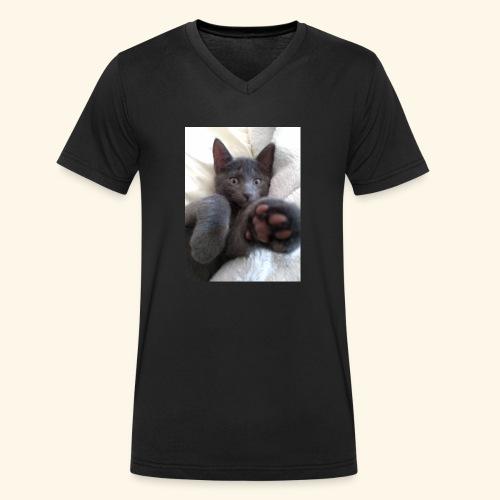 Kätzchen - Männer Bio-T-Shirt mit V-Ausschnitt von Stanley & Stella