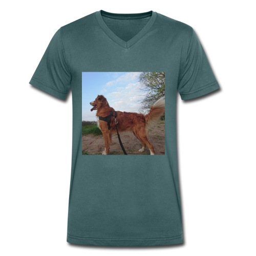 Rudi - Männer Bio-T-Shirt mit V-Ausschnitt von Stanley & Stella