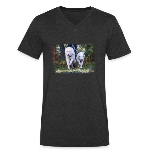...and Go - Männer Bio-T-Shirt mit V-Ausschnitt von Stanley & Stella