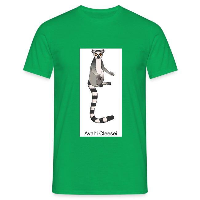 lemur from fla tekst