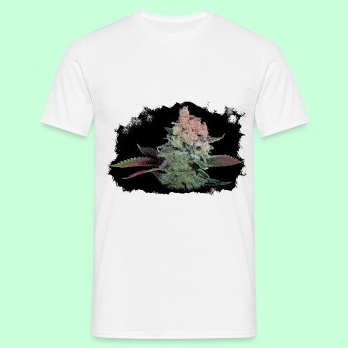 Pflänzchen png - Männer T-Shirt