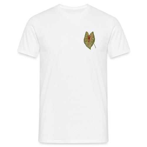 Caladium Tubereux - T-shirt Homme