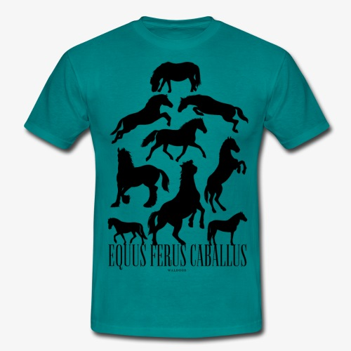 Equus Ferus Caballus Black - Miesten t-paita