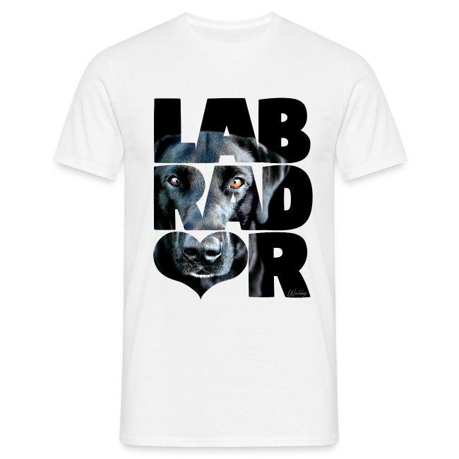 NASSU Labrador Black III