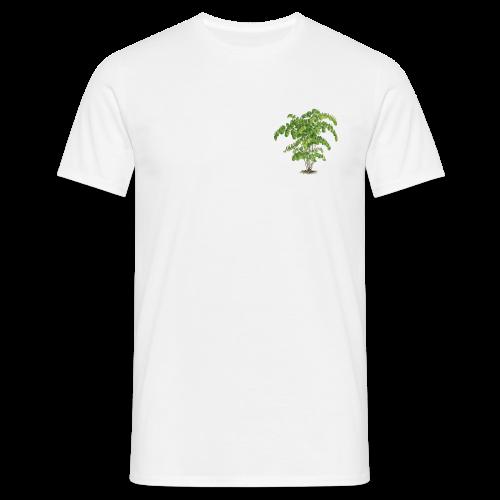 Adiantum Bausei - T-shirt Homme