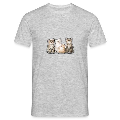 Katzenbabys - Men's T-Shirt