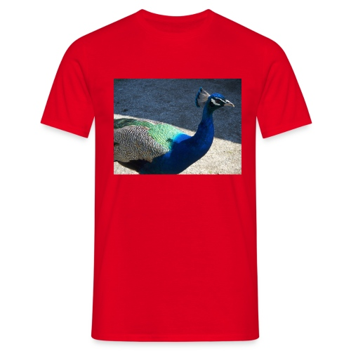 Riikinkukko - Miesten t-paita