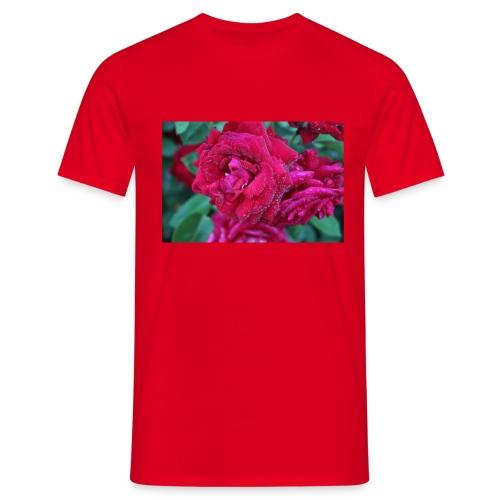 Rosa preciosa - Camiseta hombre