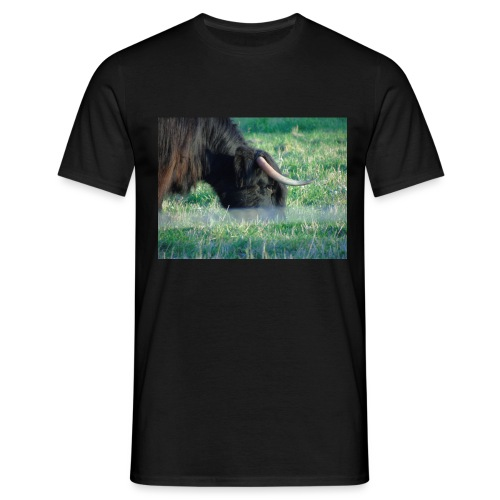 A highland cow - Men's T-Shirt