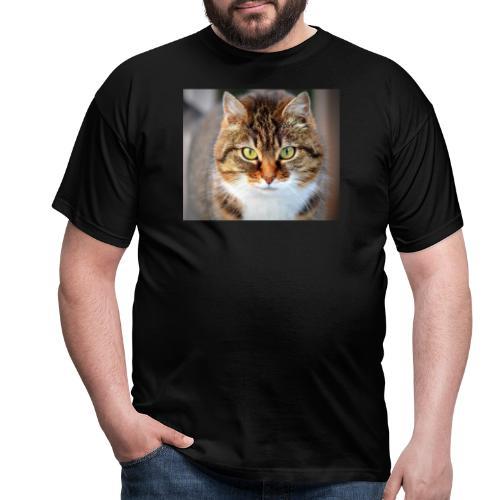 cat 300572 1920 - Camiseta hombre