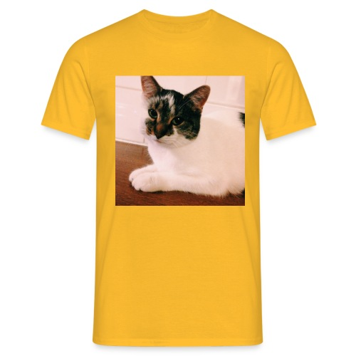 Cats - Mannen T-shirt
