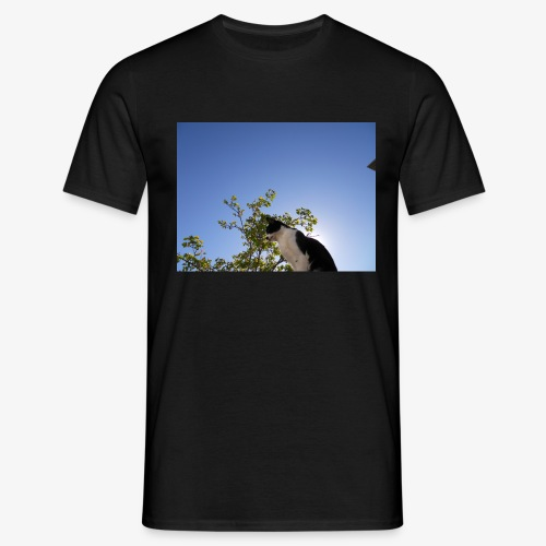 DSCN7881 - Camiseta hombre
