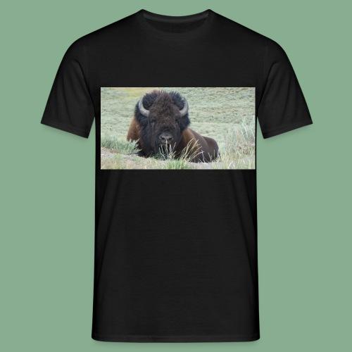 Bison - T-shirt Homme