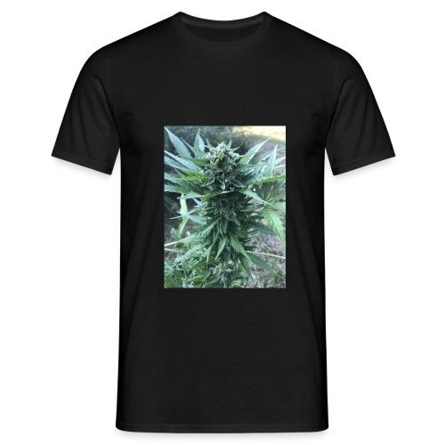 Bud Cannabis - Männer T-Shirt