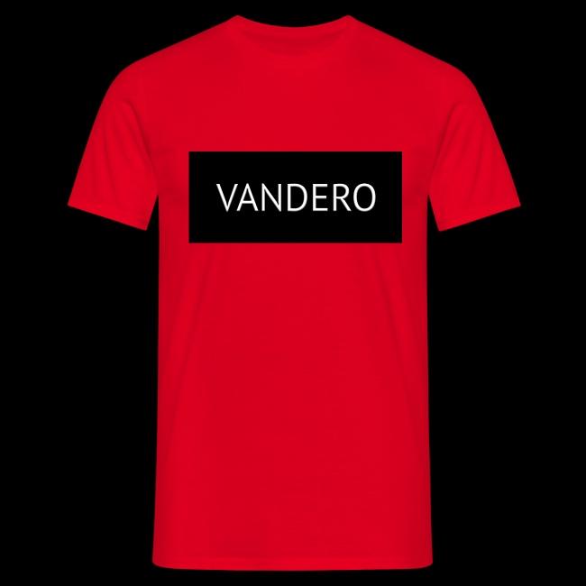 Line black vandero