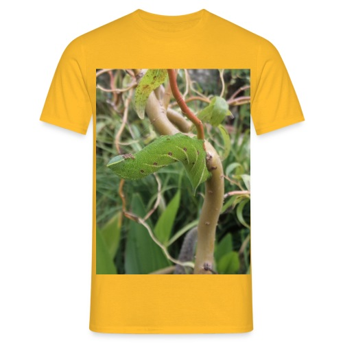 hawk moth caterpillar - Men's T-Shirt