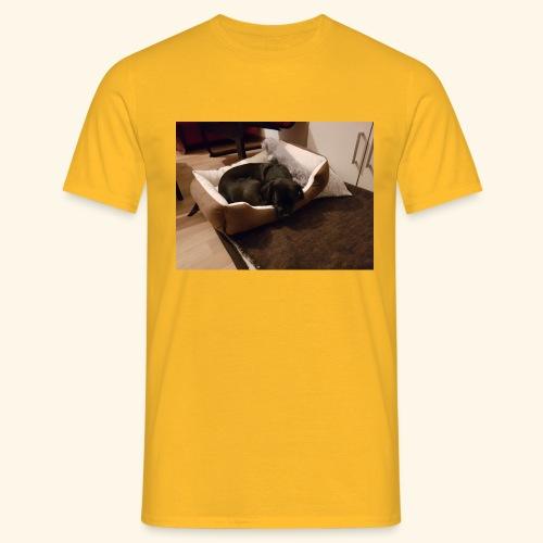 Hund im Hundekörbchen - Männer T-Shirt