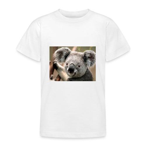 Koala - T-shirt Ado