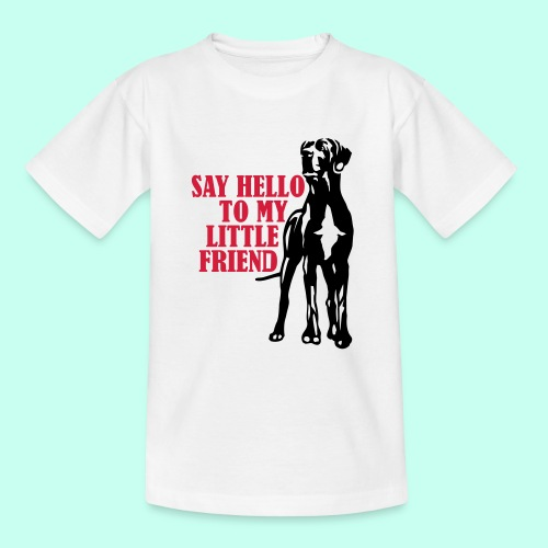 Say Hello To My Little Friend - Teenager T-Shirt