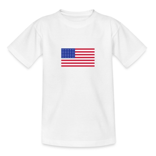 AVM 48 star flag in 3 color RGB VECTOR - Teenager T-shirt