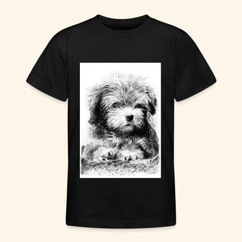 Cotton havanna - Nuorten t-paita