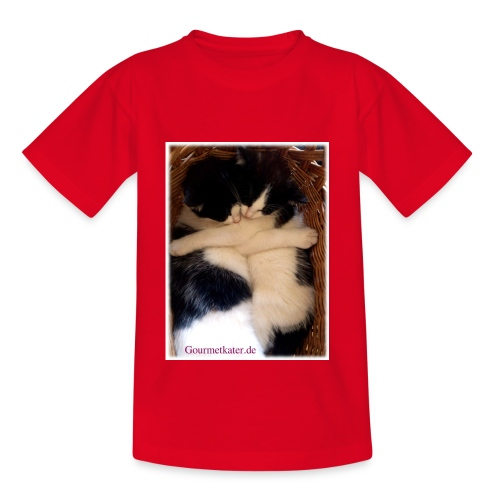 Umarmung - Teenager T-Shirt