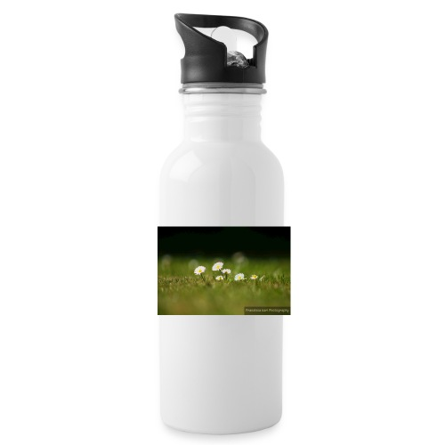 Daisies - Water Bottle