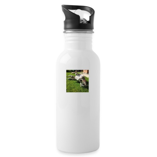12985600 1724725604434703 5820250309196482790 n - Water bottle with straw