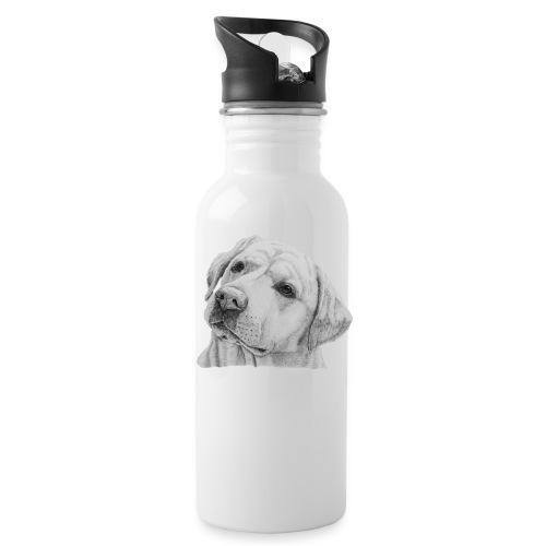 labrador retriever yellow - head - Drikkeflaske