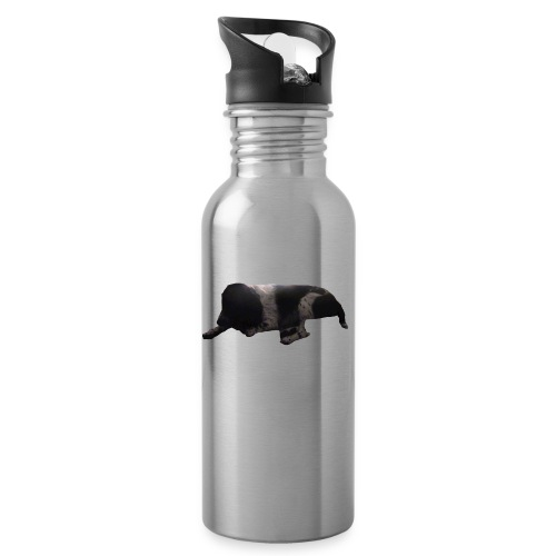 barnaby merch - Water bottle with straw